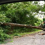 This is a driveway on Pillsbury just east of the downed trees that are across the road from MWS