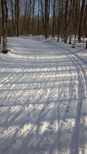 the trails at Forbush Corner on Perimeter trail. 12-31-11 great day of skiing!!!