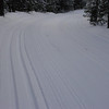 Vasa Trail 2-27-2011