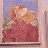 Vatican Museim Frescos