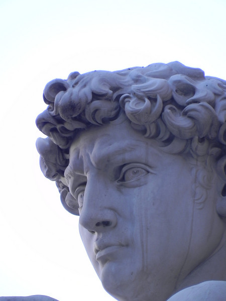 David head 1