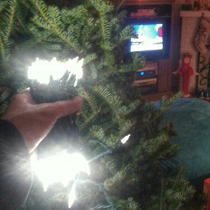 Putting the lights in the tree with The Grinch playing on tv for proper inspiration. via Instagram http://instagram.com/p/h4ivH-GFL2/