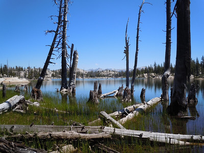 Leighton Lake is our second waypoint.  Although surrounded by dead trees, it is strangely beautiful.