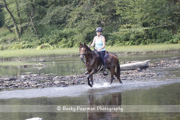 Big South Fork -SAT-100 & 50-2016