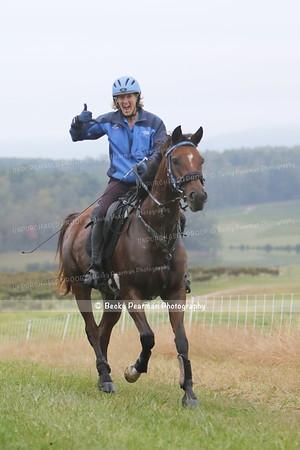 Hope for Horses -50
