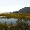 The estuary on the northern shore of Lake Pend Oreille, Idaho.