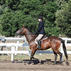 Short Stirrup/Rusty Stirrup Pleasure