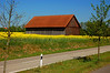 German Barn and Fields of Rapeseed near Mackenbach, Germany