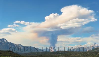 Controlled Burn, Jasper National Park Alberta