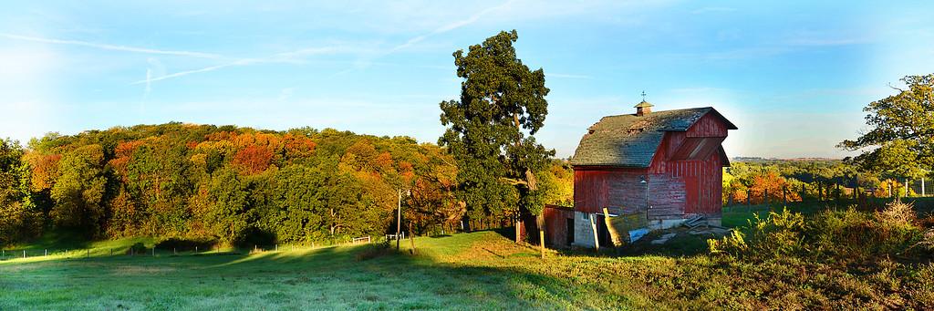 Erin's pasture