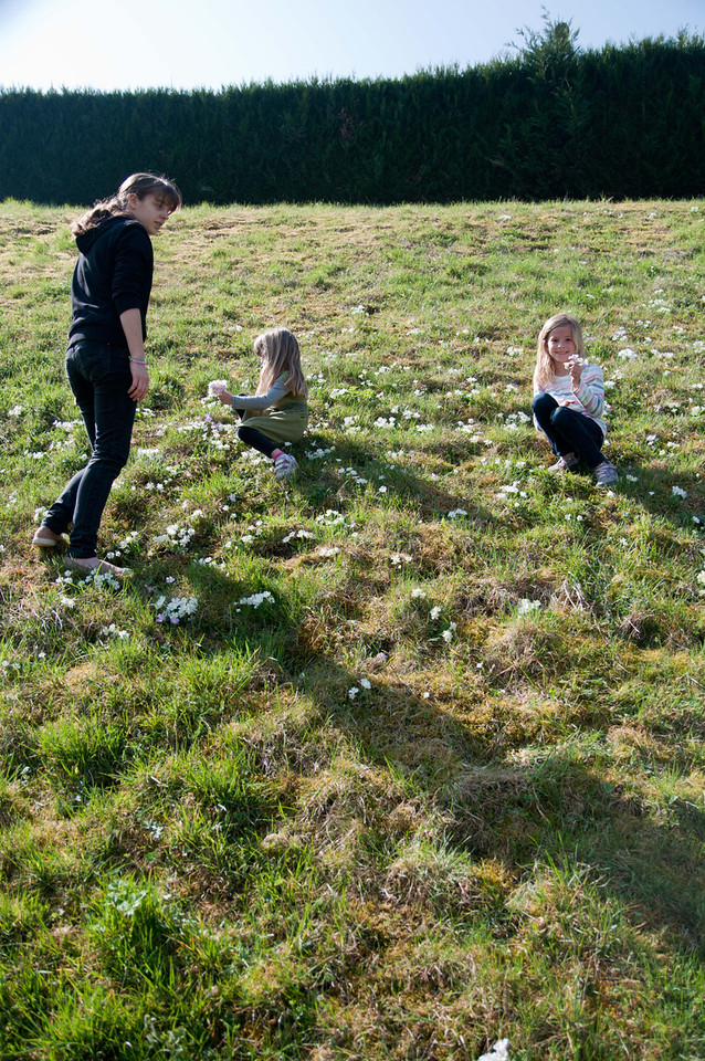 Charlotte, Elisabeth and Clemence picking flowers in St. Etienne.