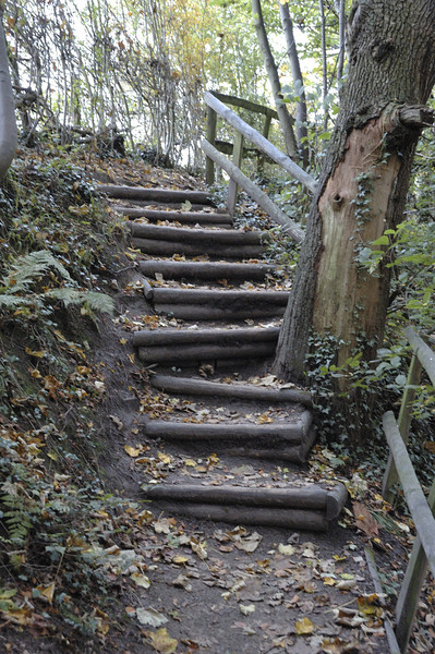 Steps On The River Brollin Trail - Manchester