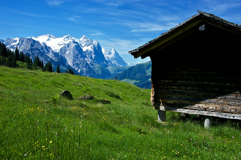 Home in the Alps.