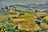 Italian Tuscan Vineyard