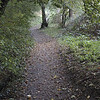 River Brollin Trail - Manchester