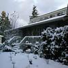 December snow (2008)
