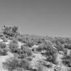 Desert_Moon_BW