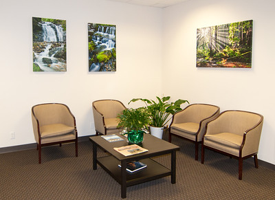 Office Reception Lobby Area with Corporate Fine Art Framed Yosemite National Park Images, Gallery Wrapped Canvas, Fern Springs, Rays Through Redwoods, Butano State Park
