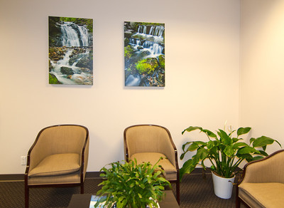 Office Reception Lobby Area with Corporate Fine Art Framed Fern Springs, Yosemite National Park, Giclee Gallery Wrapped Canvas Images