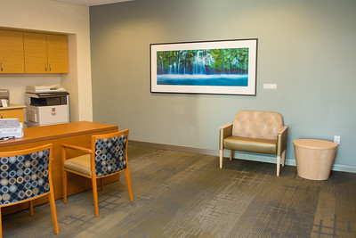 Healthcare and Corporate Office Complex Reception Area Fine Art Installation edit