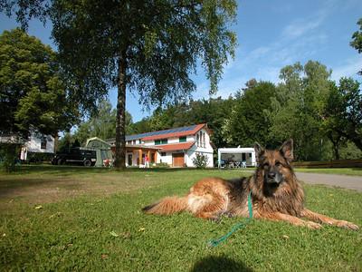 Blick auf Ferienwohnung Villa Seeblick