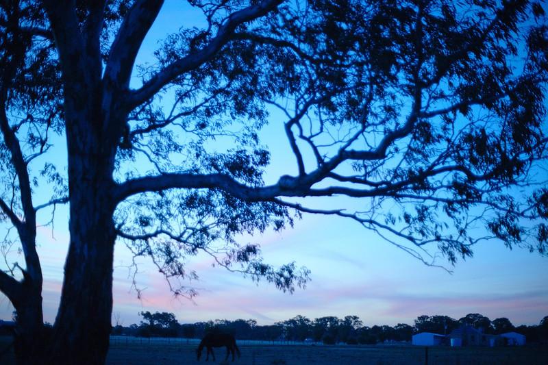 Original picture - very ordinary sunset