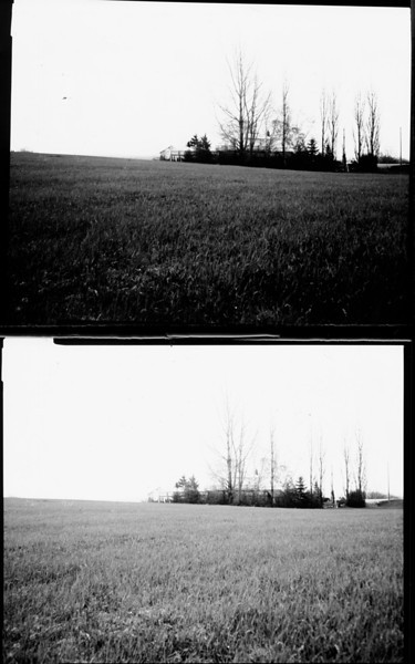 Graflex Super Graphic, paper negative, scanned and inverted