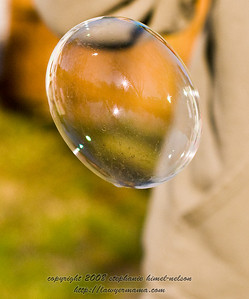 Bubble Close Up