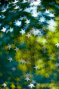 Twinkle Twinkle, Lots of Stars