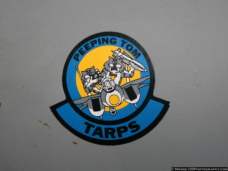 F-14 TARPS Pod - Grumman Sticker / Port side forward