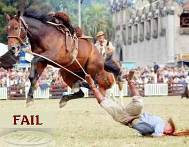 FAIL HORSE