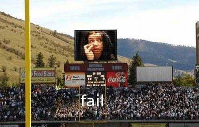 bear fail