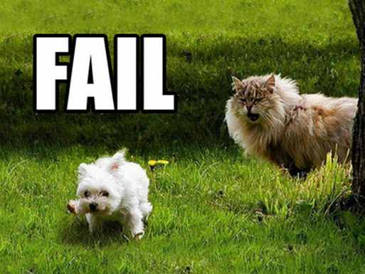 dogfail