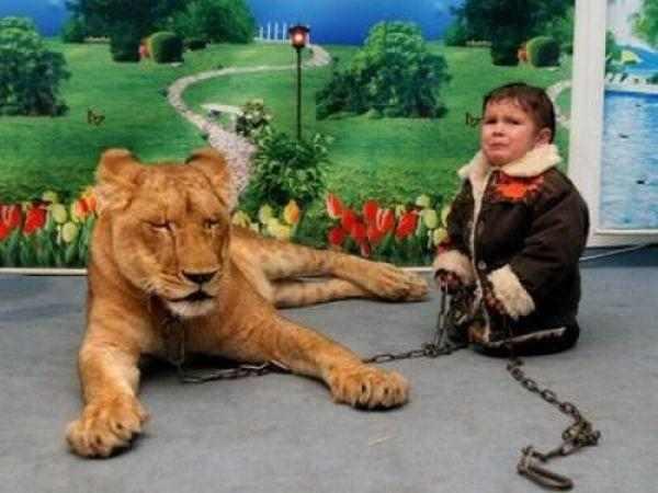 boy lion