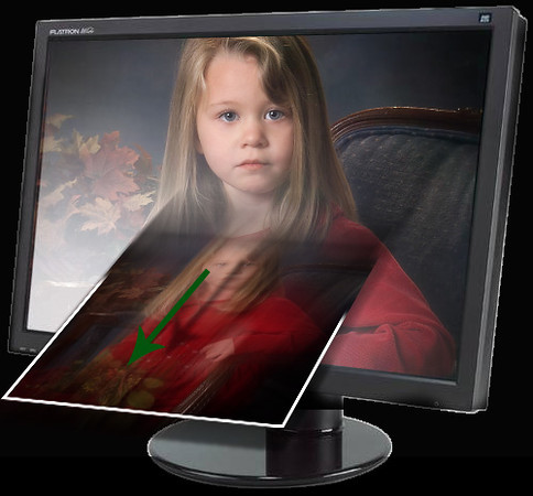 "<H2>What's a Digital Download?</H2> Perhaps the best way to get your portrait is to download it and use it anyway you see fit. Once the portraits are online, you choose the pose you like best, click the ""Buy Download"" button and it will load directly onto your computer. <H3>What then?</H3> Use your favorite photo retailer and print to your hearts delight. You can also use one of our recommended online printers"