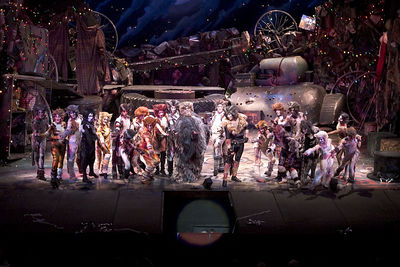 Cats 2006