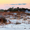 Grayton Beach SP Dunes
