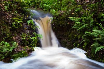 Wolf Creek Sink BR