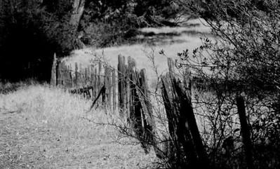 FOMFOK - Rancho Canada Del Oro Openspace Preserve
