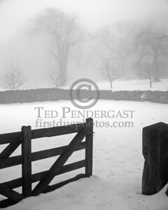 Belmont,MA Foggy paddock on Somerset St.