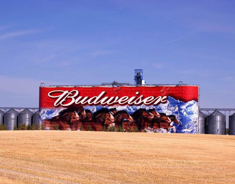 Where Bud comes from