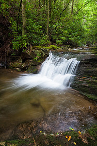 Small Falls on Red Fork Creek