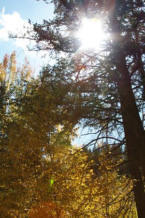 Fall 2014 at Sundance