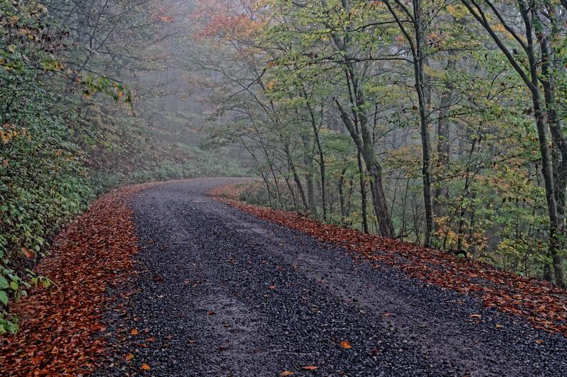 Road to White Top Mountain 1