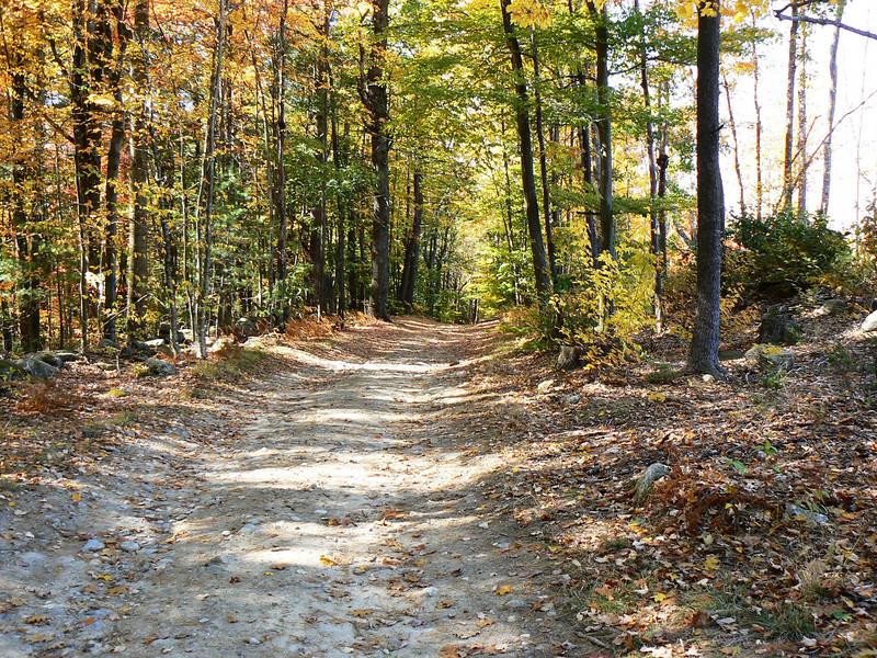 Hubbard Pond Road-Annett State Forest