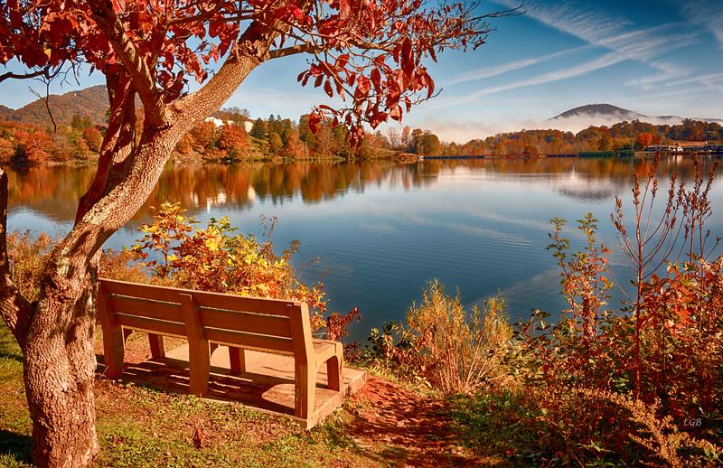 Bench with Lake Junaluska View I