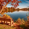 Bench with Lake Junaluska View I