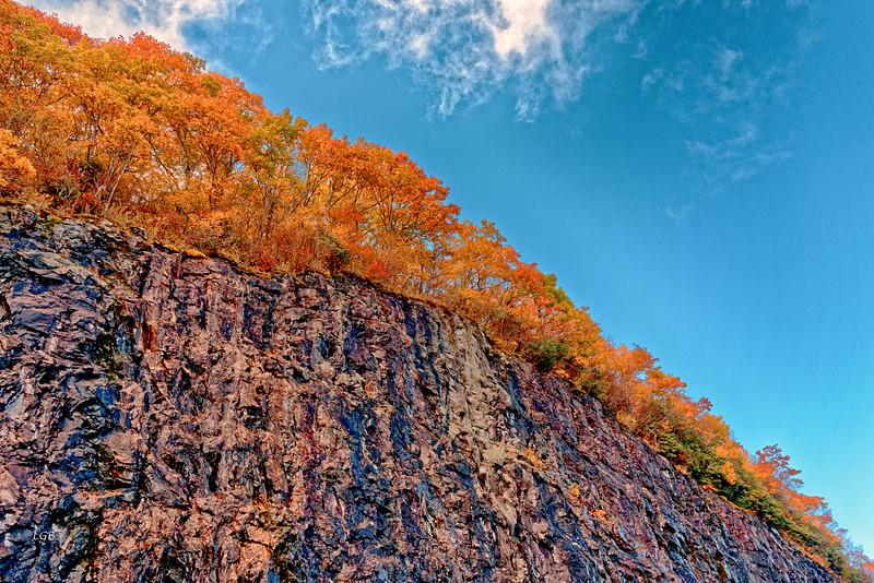 Rocks, trees, and sky