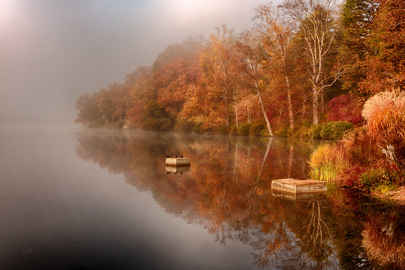 Foggy Morning - Lake Junaluska I