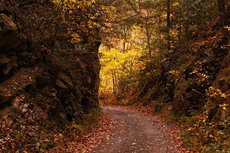 Grassy Ridge Road II